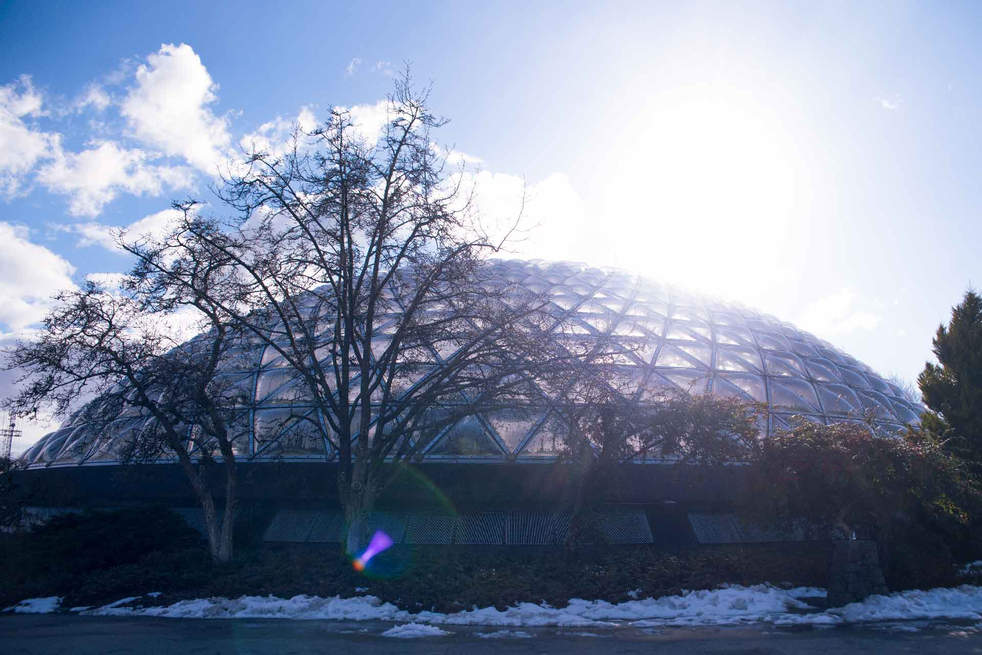Bloedel Flower Conservatory